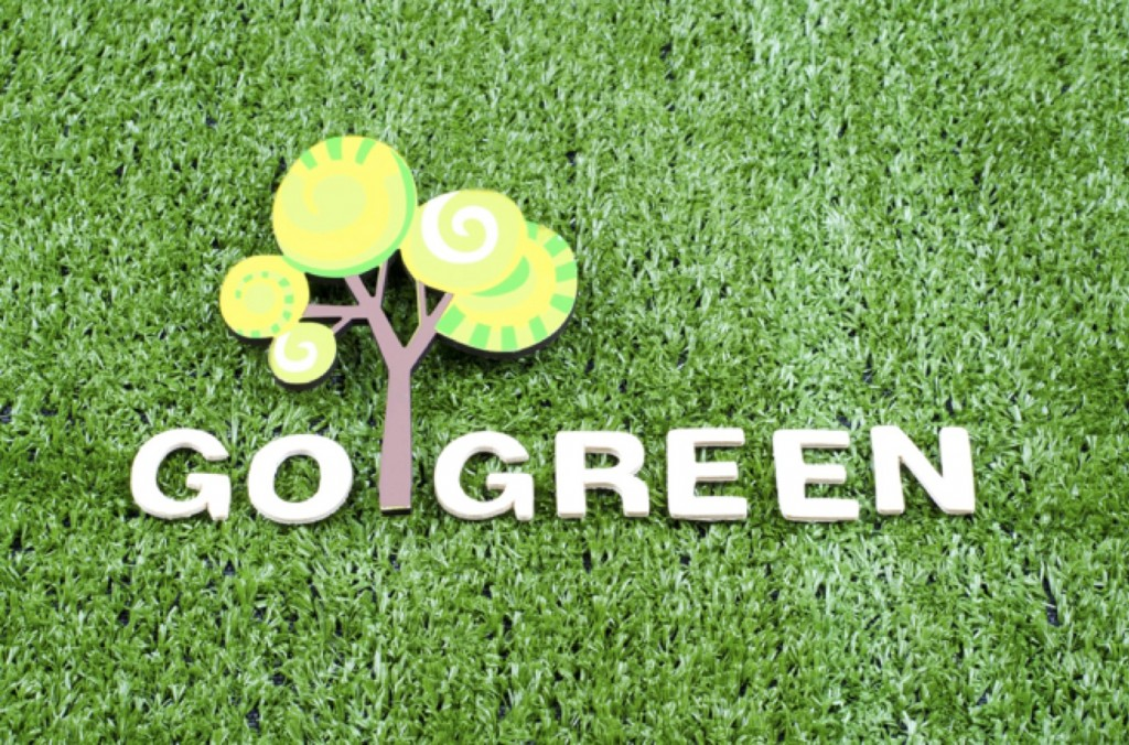 Go Green Brooklyn - environmental issues