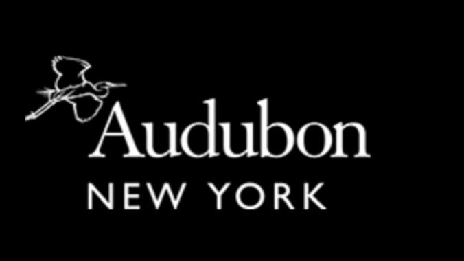 NY Audubon logo