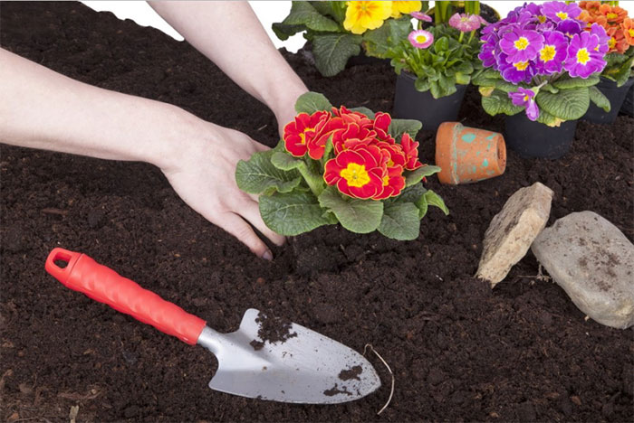 The Ultimate Compost Guide: Sure Fire Ways to Improve Plant Growth