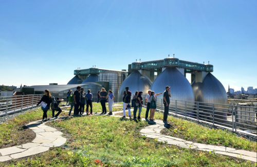 Field Day Fridays with Newtown Creek Alliance