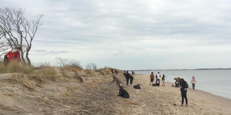 Plumb Beach Cleanup