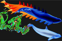 Ocean Locomotion: Bioinspiration from the Sea