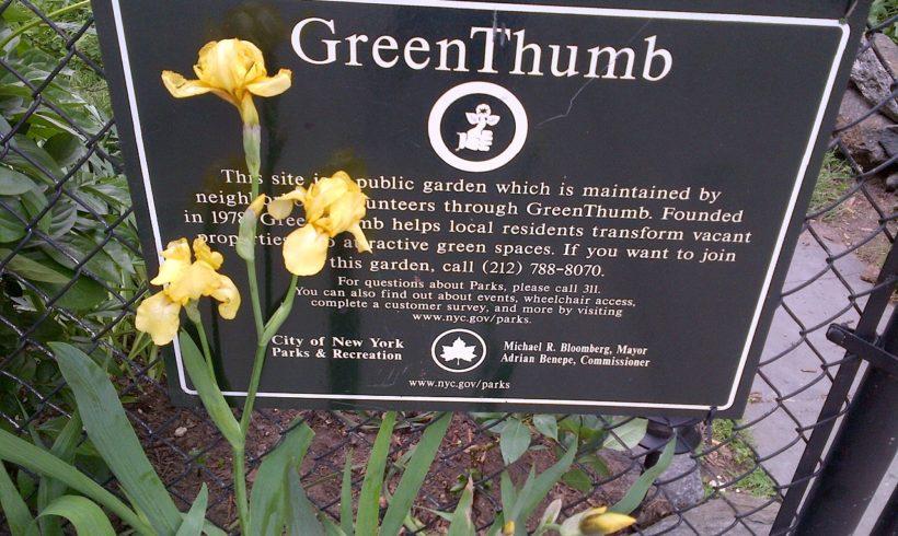 GreenThumb Open Garden Day