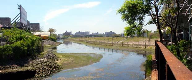 Coney Island Creek Environmental Benefit Project Fund Grant Proposal Deadline